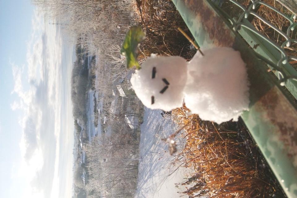雪だーByうっちー